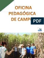 OFICINA PEDAGÓGICA CAMPAL