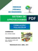 Informe formulacion