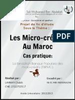 Page de Garde Microcredit