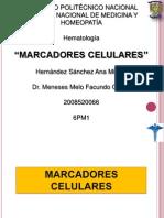 Marcadores Celulares