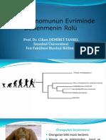 İnsan Genomunun Evriminde Beslenmenin Rolü (2).pptx
