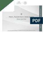 II-Perfil, Parametros e Indecadoras -Docentes