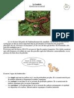 Lombric.pdf