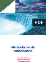 Aminoacid Synthesis