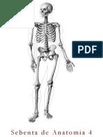 Sebenta de Anatomia 4_2014