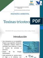 Toxinas tricotecenos
