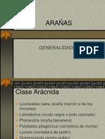 ARACNEISMO