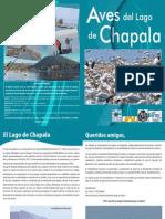 Guia Aves Chapala
