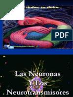 1 Neuronas y Neurotransmisores