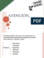 ATENCIÓN , Neuropiscologia