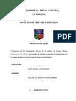 Proyecto de Tesis - Héctor León Montero