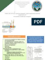 Presentación de Artículo No. 2 Microdominios Lipídicos Sección D