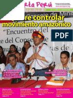 Alerta Perú 12 - noviembre 2009