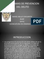 programasdeprevenciondeldelito-121123121141-phpapp01