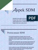 Aspek SDM