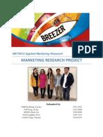 Breezer Report Final