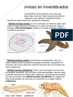 presentacin1-110512102834-phpapp02