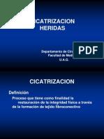 3 Manejodeheridasycicatrizacin 120201200221 Phpapp02