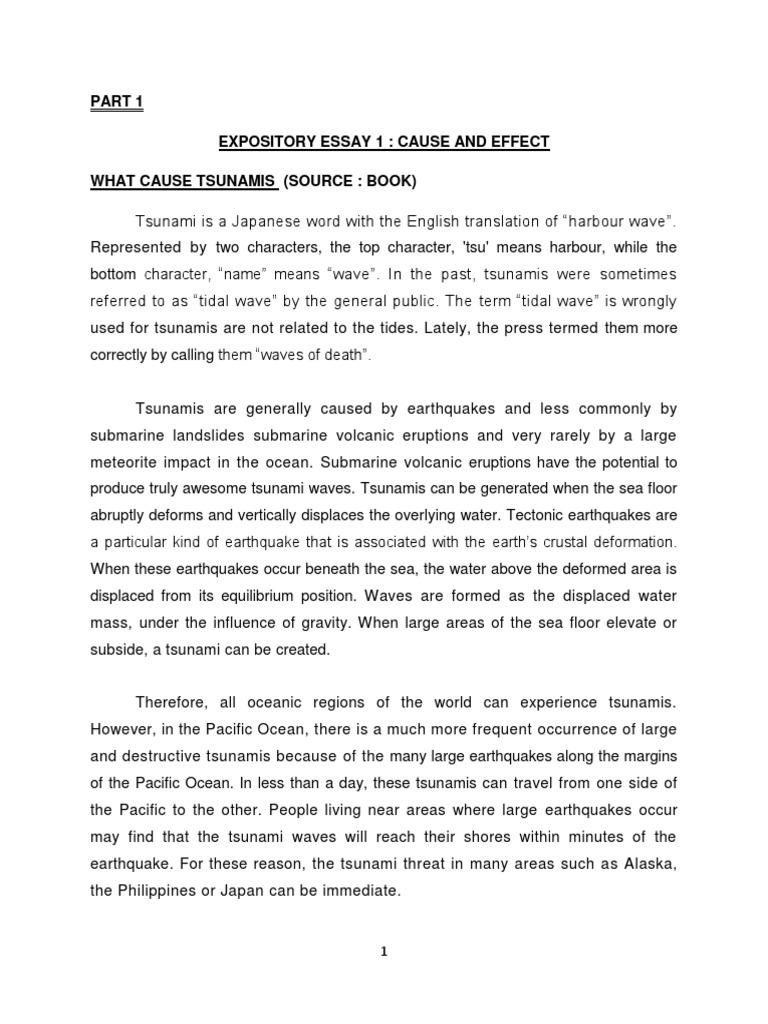 Essay On Tsunami