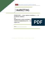 Plan de Marketing GHID de Realizare.pdf Publicitate
