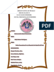 Visión Panorámica de La Situación de Salud en El Perú