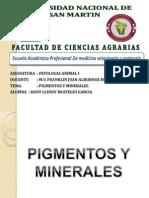 Expo de Patologia (1)