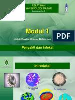4.PenyakitInfeksi-boerhan