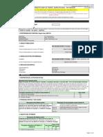 FormatoSNIP04-PerfilSimplificado San Martín