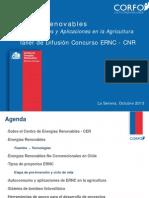 Cnr Ernc 2013 Presentación Cer