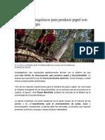 Árboles transgénicos para producir papel con menos energía.pdf