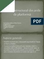 Proiect Geografiie Fizica - Relieful Structural Din Ariile de Platforma