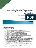 2014-Histologie de L_appareil UrinaireP1-2-3 [Mode de Compatibilité]