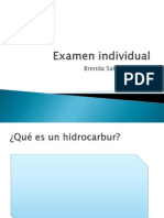 Examen Individual