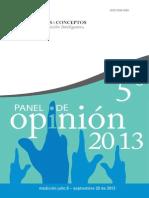 Panel de Opinión 2013 (V)