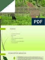 SALITRAL HUARMACA