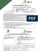 Formato Instrumentación 2013 Desarsust Verii (1)