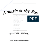 a raisin in the sun student packet
