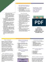 prevention program brochure