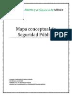 Mapa Conceptual de Seguridad Pública