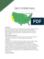 gambelswatercressstatistics 1
