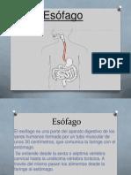 esofago-130920221828-phpapp01