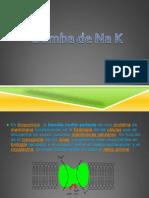 la bomba de Na K 2.pptx