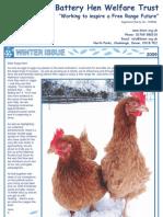 BHWT Newsletter Winter 2009