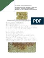 Tipos de Resinas de Intercambio Iónico