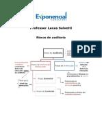 2315 Riscos de Auditoria - Lucas Salvetti