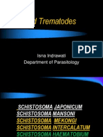 Schistosoma Parasit