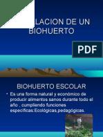 Instalacion de Un Biohuerto