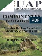 componentes microbiano