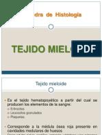 Tejido Mieloide SMM
