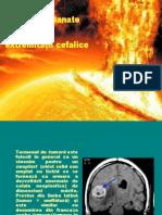 Tumori Cutanate Ale Extremitatii Cefalice